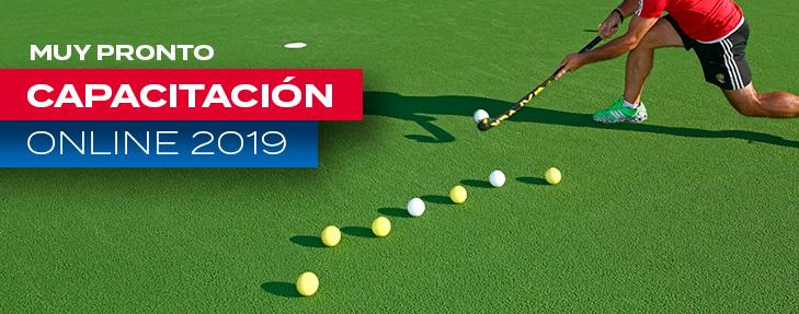 PROGRAMA DE CAPACITACIÓN ONLINE 2019